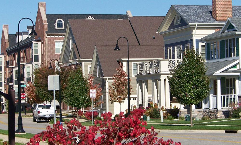 Triangle Neighborhood Development Plan